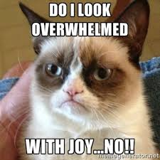 Do I look overwhelmed With joy...NO!! - Grumpy Cat | Meme Generator via Relatably.com