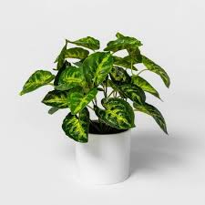 <b>Hydrangea</b> : <b>Artificial</b> Flowers & <b>Plants</b> : Target