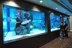 nyc office tank aquarium office