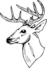 Free <b>Black And White Deer</b> Drawing, Download Free Clip Art, Free ...