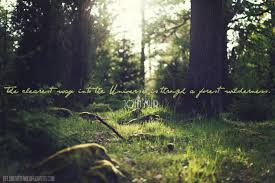 Nature Quotes and Inspiration. - belong with wildflowers via Relatably.com