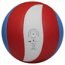 <b>Волейбольный мяч Gala Training</b> 10