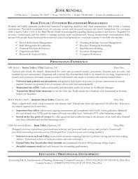 head teller resume head teller resume 95