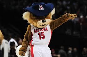 Image result for arizona mascot
