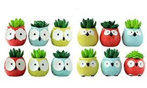 12 PCS Set <b>Cute Cartoon Animal Owl</b> Shaped Ceramics Succulent ...