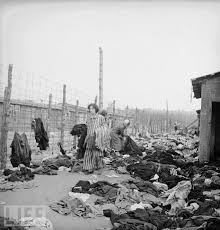 "「""Gedenkstätte Bergen-Belsen」の画像検索結果"