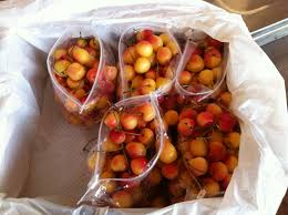 produce clerk the produce clerks handbook by rick chong bagged rainier cherries for the canadian market