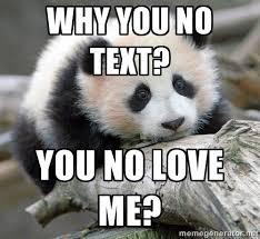 Why you no text? You no love me? - sad panda   Meme Generator via Relatably.com