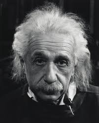 diversity is beautiful albert einstein on minorities and majorities information via