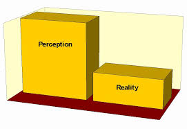 Image result for perception vs reality