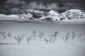 <b>SPRING</b> PHOTO WORKSHOP - <b>ARCTIC</b> DESERT — Boreal Photo ...