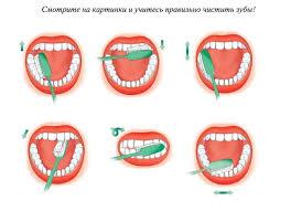 Рекомендации по гигиене полости рта для детей от 0 до 3-х лет ...