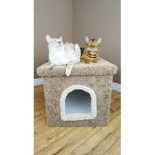 premier litter box enclosure color brown by wayfair arena kitty litter box