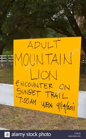 mountain lion sighting notice hikers at quail hollow preserve mountain lion sighting notice hikers at quail hollow preserve near santa cruz california usa encountered a wild mountain lion