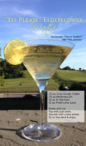Martini Recipes Vodka Big City Little Blog Lifestyle Blog