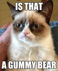 IS THAT A GUMMY BEAR - Grumpy Cat - quickmeme via Relatably.com