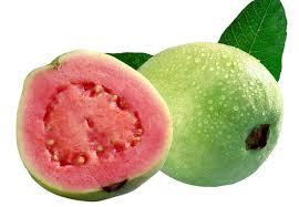 Hasil gambar untuk Benefits of guava fruit