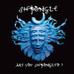Are You Shpongled? album by Shpongle