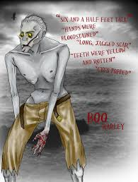 tkam boo radley by collideral
