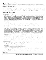 sales executive resume template resume and cover letters sales executive resume template resume and cover letters sample executive resume format