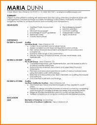 internal resume examples debt spreadsheet internal resume examples auditor finance jpg