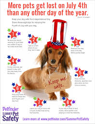 Infographic: Fourth of July Safety for Dogs - Petfinder