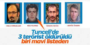 Öldürülen teröristin mavi listede olduğu ortaya çıktı