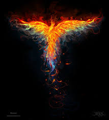 Image result for image of phoenix