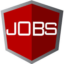 senior frontend developer team lead at namshi in dubai remote angularjobs logo