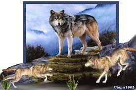 """Résultat de recherche d'images pour """"gif bonne semaine les loups"""""""