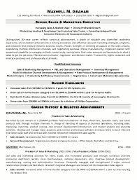 cv and marketing sample resume sales manager