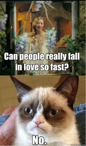 Can people really fall in love so fast? No. - Grumpy Cat Cosette ... via Relatably.com