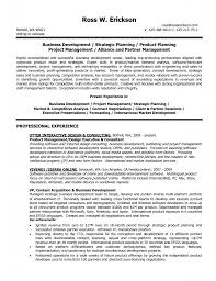 director business development resume business development resume sample resume business development manager sample resume business development manager