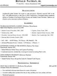 Resume Applications  application programmer resume template     college admissions resume template
