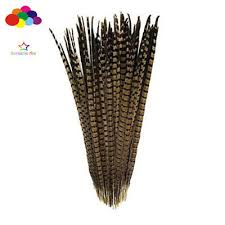 10-100 Pcs <b>20-22</b> Inch/<b>50</b>-<b>55cm</b> Natural <b>Pheasant</b> Tail Feathers ...