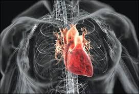 Especialistas del mundo expondrán saberes sobre cardiocirugía