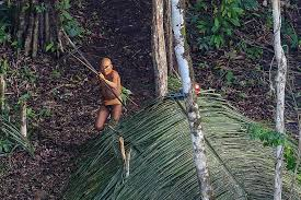 Exclusive: Stunning New Photos of Isolated <b>Tribe</b> Yield Surprises