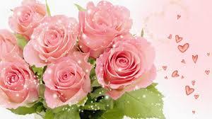 """Résultat de recherche d'images pour """"انواع الورود"""""""