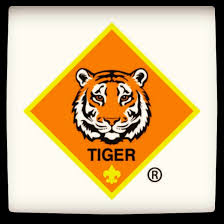 Image result for tiger scout 2016