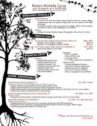creative resume objectives template creative resume objectives