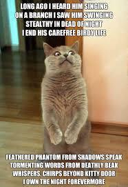 Horrorcat memes   quickmeme via Relatably.com