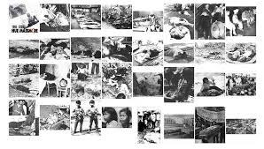 Image result for Cuộc nổi dậy ở Quỳnh Lưu 13-11-1956-(Nghệ An)
