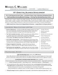 sample resume business major   sales and marketing resume cover    sample resume business major human resources business  ner resume sample resume my international business cv international