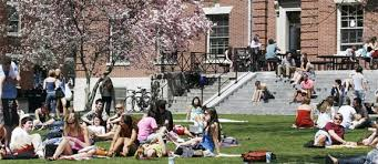 33 Factors for How to Choose a College college students lawn