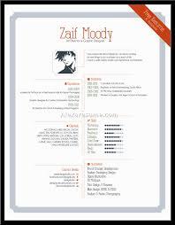 graphic designer artist statement starting your own graphic design resume design examples entry volumetrics co graphic design resume templates graphic design resume examples 2015
