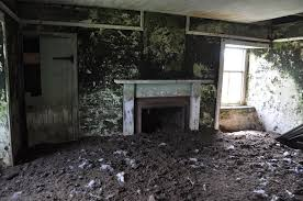 stroma scotland wikipedia the free encyclopedia view of interior an abandoned house with peeling walls and office band office cubicle