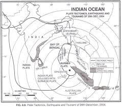 essay on tsunami  www gxart orgessay on the tsunami of th   damages by tsunami