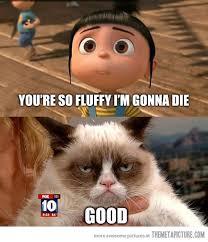You're so fluffy... - The Meta Picture via Relatably.com