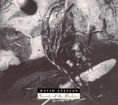 <b>Secrets</b> of the Beehive - <b>David Sylvian</b>   Songs, Reviews, Credits ...