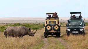 Image result for tourist picture upload in masai mara